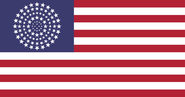 American flag 100 stars