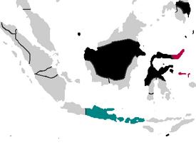 Matarami Expansion (PMII)