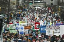 New zeland protest