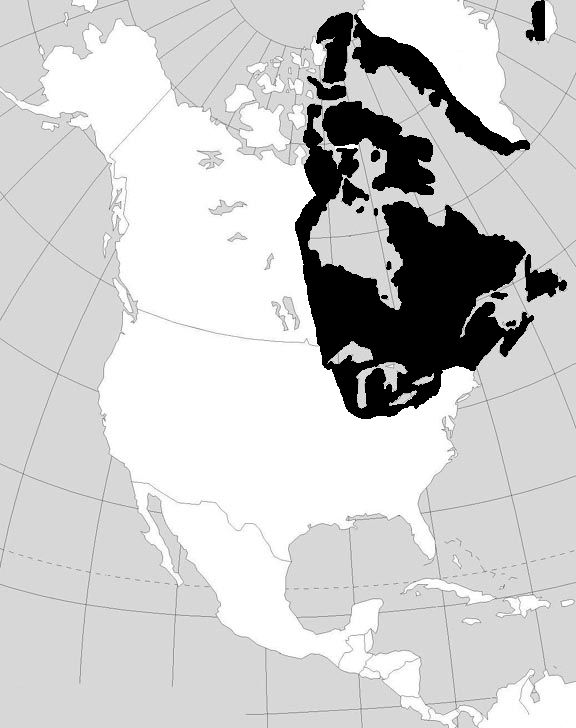 Norse World Map.Norse Colonization Of The Brendanias Early Colonization