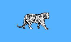 Flag of Malaya province