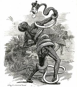 Карикатура на Напа 4