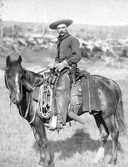 800px-Cowboy 18872
