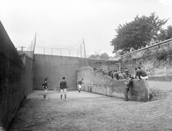 Boys playing handball at a handball court in Ireland in the 1930s (5774774659)