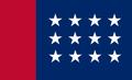 Bandera de la CNS