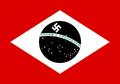 Brazil Nazi Flag.png