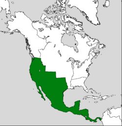Mexico location JoW.png