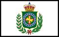 Flag Brasil PMII.png