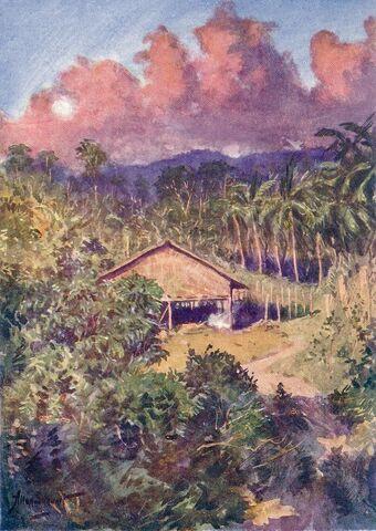 File:Sulu house & coconut plantation.jpg