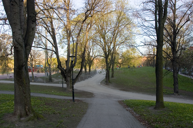 File:Syksyn Park.png