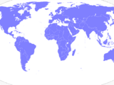 United Nations (An Independent in 2000)