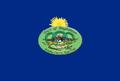 Binghamton flag