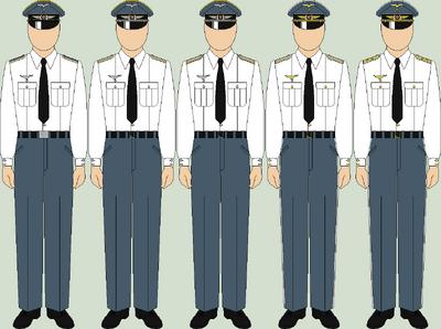 Die luftwaffe walk out uniforms