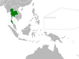 Thailand (Cherry, Plum, and Chrysanthemum)