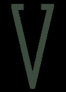 VVitaminLogo