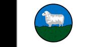 Patagonia VINW First Flag