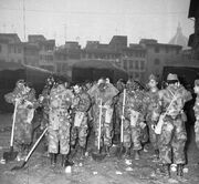 Tuscan Troops