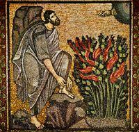 Dornbusch (Mosaik)