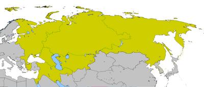 ВО России ПЭ.