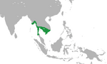 Funan Kingdom