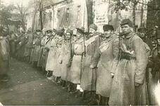 Защитники Петрограда