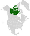 AMP Map of Canadian Republic VII.png
