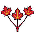 Canadian leaves.png