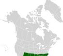 Confederate States of America (American Moral Peace)