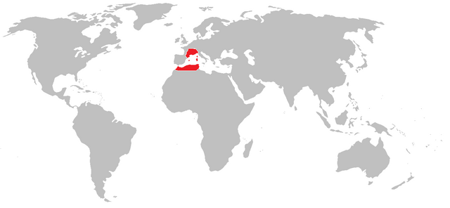 File:Swiss empire.png