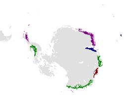 Map of Antarctica c.1830