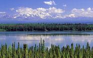 Willow lake alaska