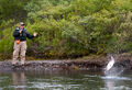 Silver-Salmon-Fishing-at-Alaska-West-31.jpg