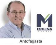 Afiche Molina Diputado (CNS)