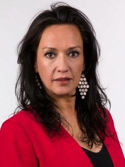 Marisela del Carmen Santibáñez Novoa