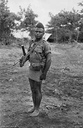 Сержант армии Папуа