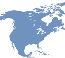United States of America (Pauvre Monde)