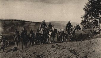 Командир дивизии на Карпатском перевале