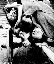 Последствия холокоста