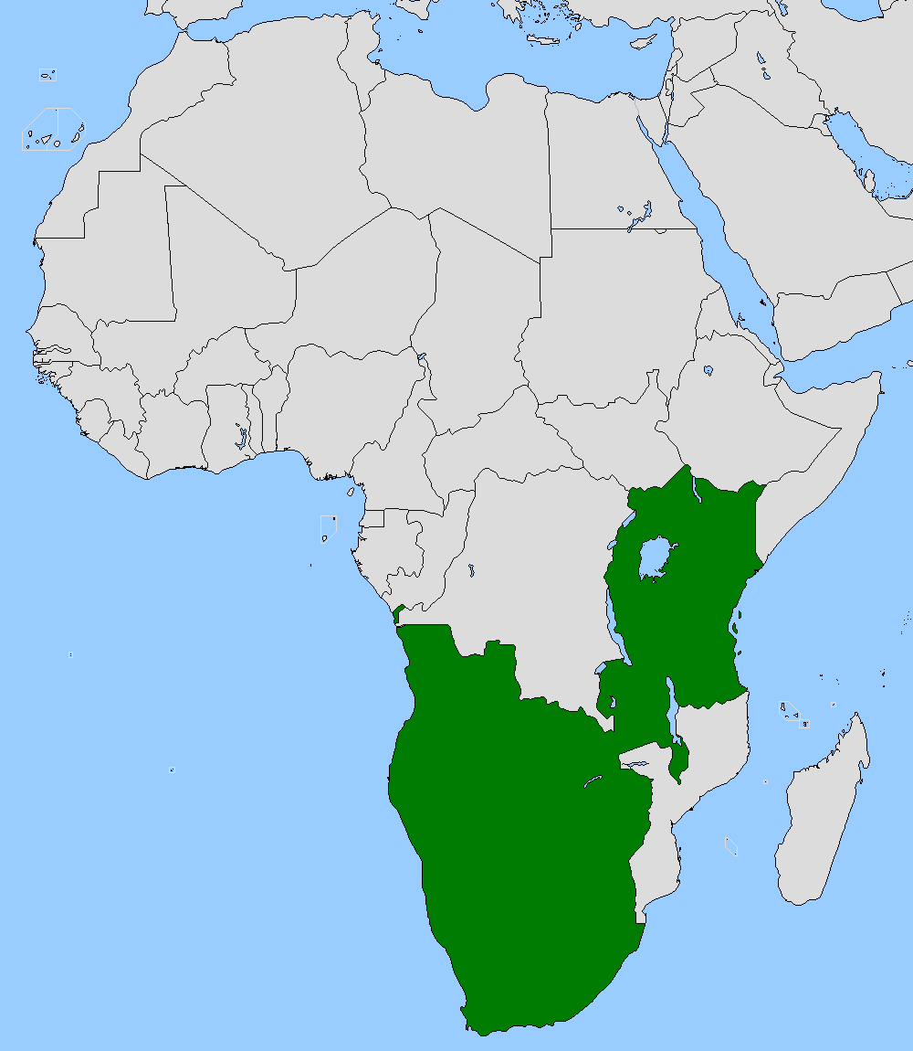 African Union (Axis vs Allies: Resurrection Map Game