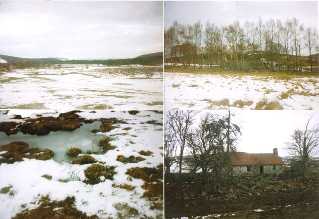 File:AvAr Oulu, Finland.jpg