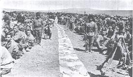 Армянские добровольцы-0