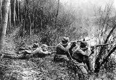 Немецкие войска под Гаагой