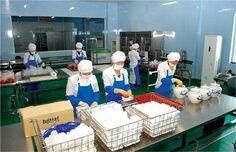 Рыбная фабрик