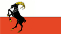 Flag of Juterbog (The Kalmar Union)