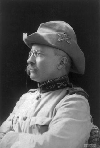 File:Theodore Rooseveltnewtry.jpg