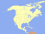 Jamaica (An Independent in 2000)