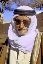 Bedouin sheikh