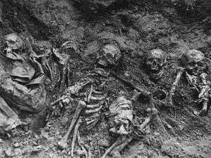 Ostanki zamuchennyh v lagere sovetskih voennoplennyh Pskov