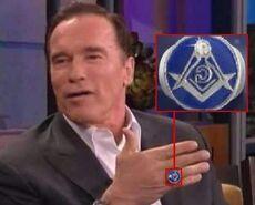 SchwarzeneggerRing