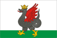Flag of Kazan (Tatarstan)
